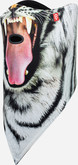 Airhole - FACEMASK STANDARD SNOW TIGER